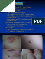 Skin Tumor 2