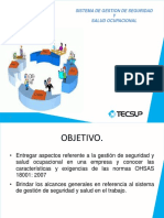 1A SISTEMA OHSAS.pdf