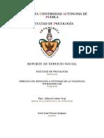 Reporte Servicio Social Savif