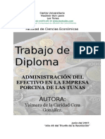 administracion-efectivo-empresa-porcina-240108.doc