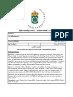 Aktivt pansar.pdf