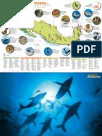 Mapa Fauna Protegida Mexico Md
