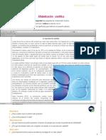 Cuaderno_CTA4_u5.docx