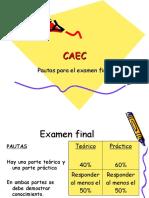 Pautas Examen Final CAEC