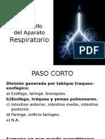 Desarrollo Del AP. Respiratorio (Paso Corto)