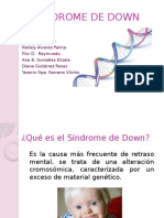 Sindrome de Down 1