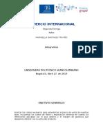 ENTREGA FINAL COMERCIO.doc