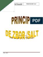 PRINCIPII DE ZBOR SALT 2013 36pag.pdf