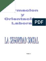 Tema 3 La Seguridad Social