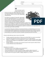 comprensionlectota_5y6B EL REY DEL DISFRAZ.pdf