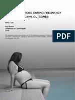 Rapport Phd Mette