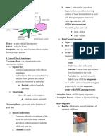 Botany - Flower Structure.pdf