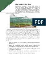 Estructura Para Cultivos Protegidos