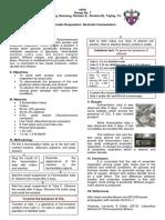 Anaerobic Respiration Formal Report