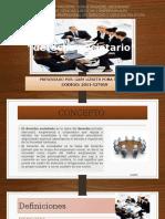Derecho Societario (1)