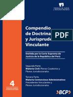 Compendio de dopstrina legal y jurisprudencia vinculante Civil y administrativo.pdf