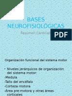 bases-neurofisiológicas-Cardinali.pptx