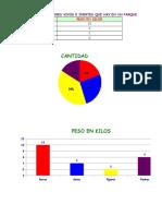 Parcial Excel Darling