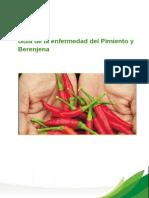 GUIA ENFERMEDAD Pimiento y Berenjena