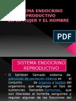 Sistema Endocrino Reproductivo