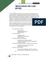 microbiollogia  informe n° 3 (Autoguardado)