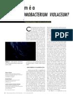chmobacterium violaceum.pdf