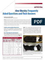 FAQs Obesidade Canina e Felina