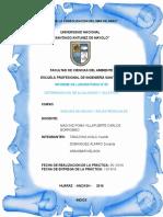 InformeTerminacion de Alcalinidad y Sulfatos