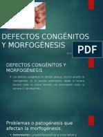 DEFECTOS CONGÉNITOS Y MORFOGÉNESIS.pptx