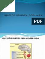 S.1 Bases Neurobiológicas del lenguaje y habla