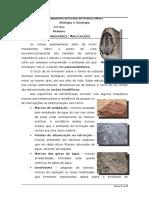 57754339-Resumo-11º-Ano-Rochas-Sedimentares.docx