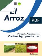 agroeconomia_arroz_final2013.pdf