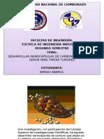 Actualizacion Cientifica Carbono.docx Diapositivas