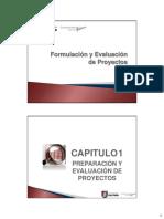 Formulación y Evaluación de Proyectos 1 (1)