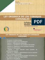 leyorganicadelosconsejoscomunalespresentacion-p01.ppsx