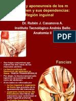 39.- Fascias y Aponeurosis de Los m Del Abdomen