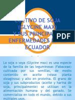 cultivo de soja y sus principales enfermedades en el ecuador (Enner Bacilio)