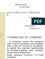 formation of a company.pptx