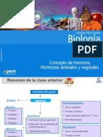 Clase 11 Concepto de Hormona. Hormonas Animales y Vegetales