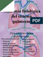 anatomía fisiológica pulmón