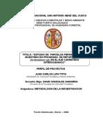 Juan C. Lipa proyecto.doc