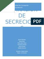 Aspiracion de Secreciones (1)