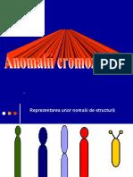 8 Anomalii de Structura