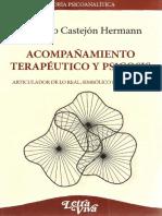 Acompañamiento Terapéutico y Psicosis [Maurício Castejón Hermann] (1)