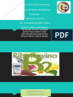 Biotina y Riboflavina