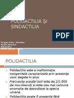 Polidactilia şi sindactilia