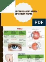 Bio-efectele Stimularii SNV Asupra Diferitelor Organe