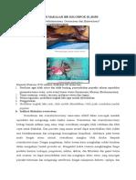 Revisi Makalah Ibk Kelompok 10