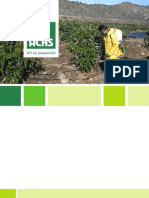 Folleto_PLAGUICIDAS.pdf
