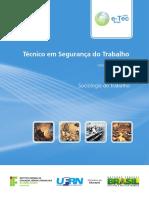 Sociologia Do Trabalho - TEXTO BASE PARA A DISCIPLINA
